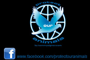 Protect our Animals auf Facebook